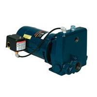 Franklin Convertible Jet Pump