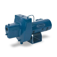 Berkley Iron Shallow Well Pump